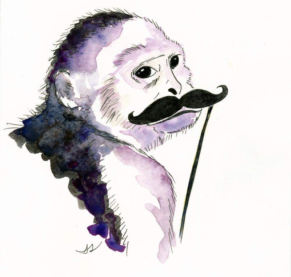 drawingsarah.com_monkey.jpg