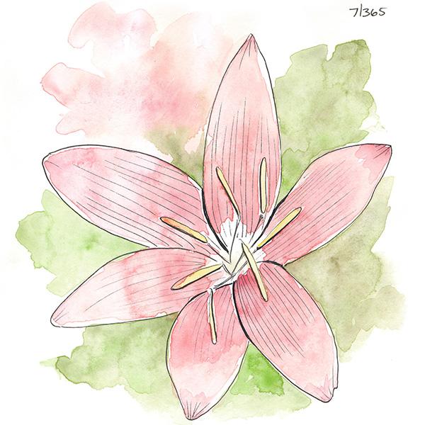 drawingsarah.com | 7/365