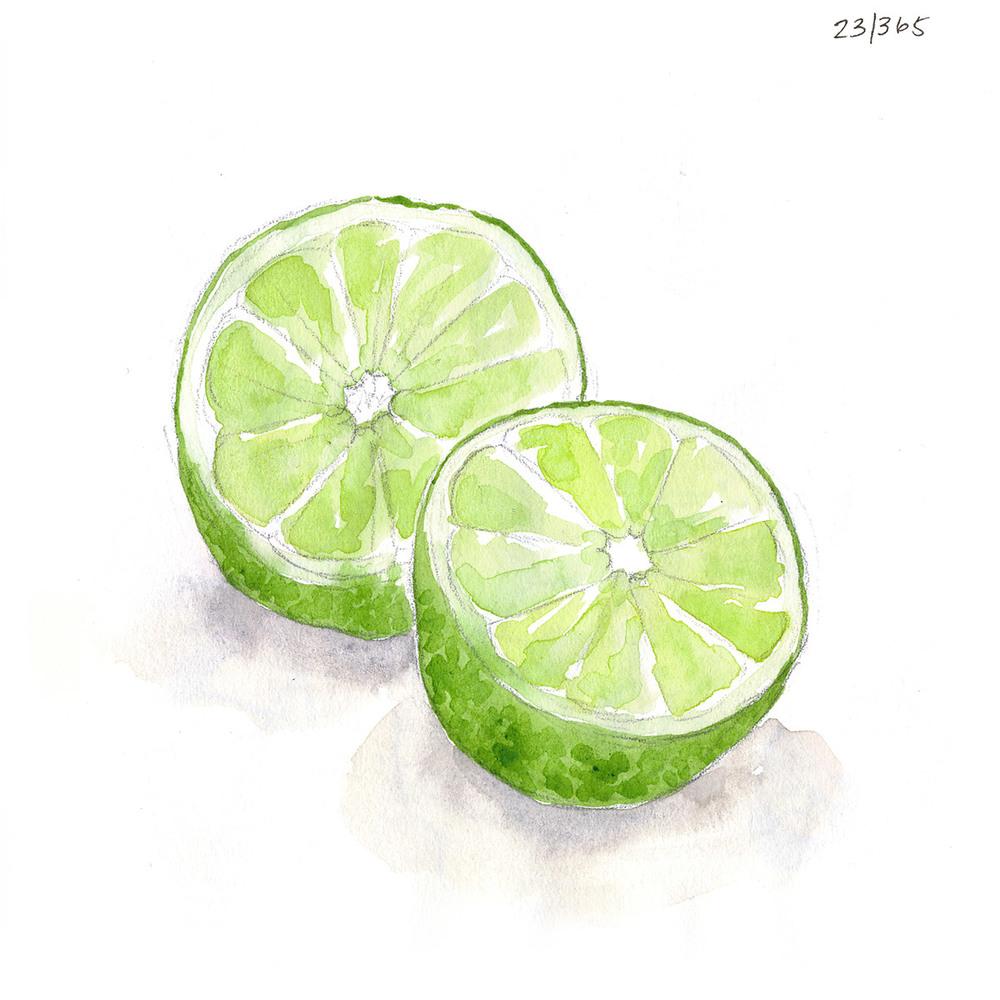 drawingsarah.com | 23/365