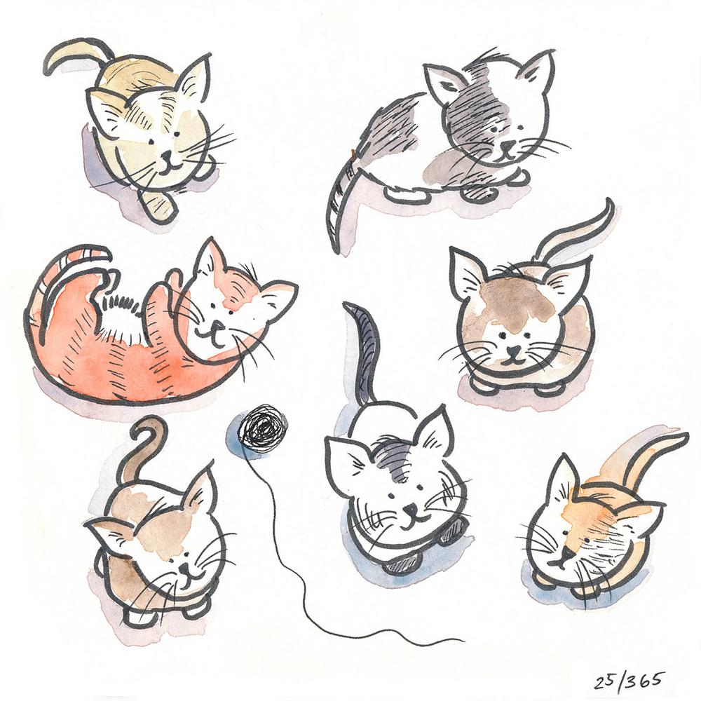drawingsarah.com | 25/365
