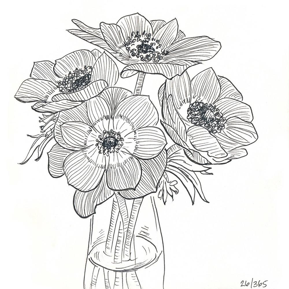 drawingsarah.com | 26/365
