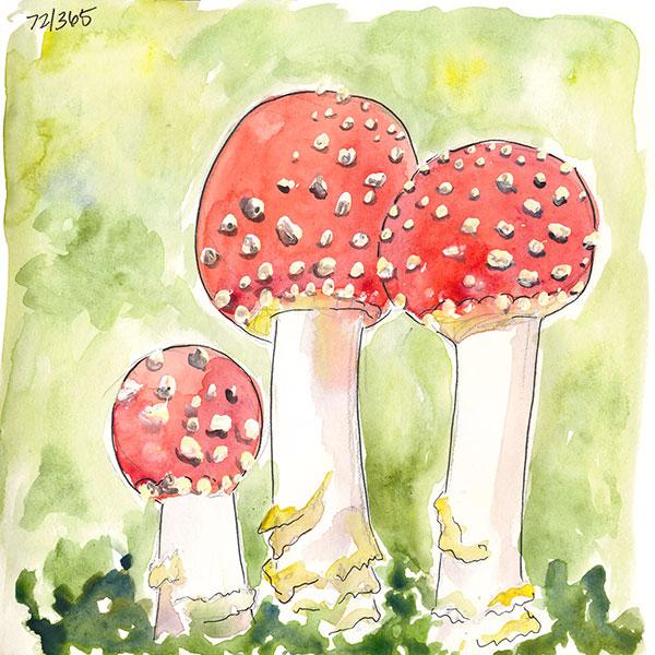 drawingsarah.com | 72/365
