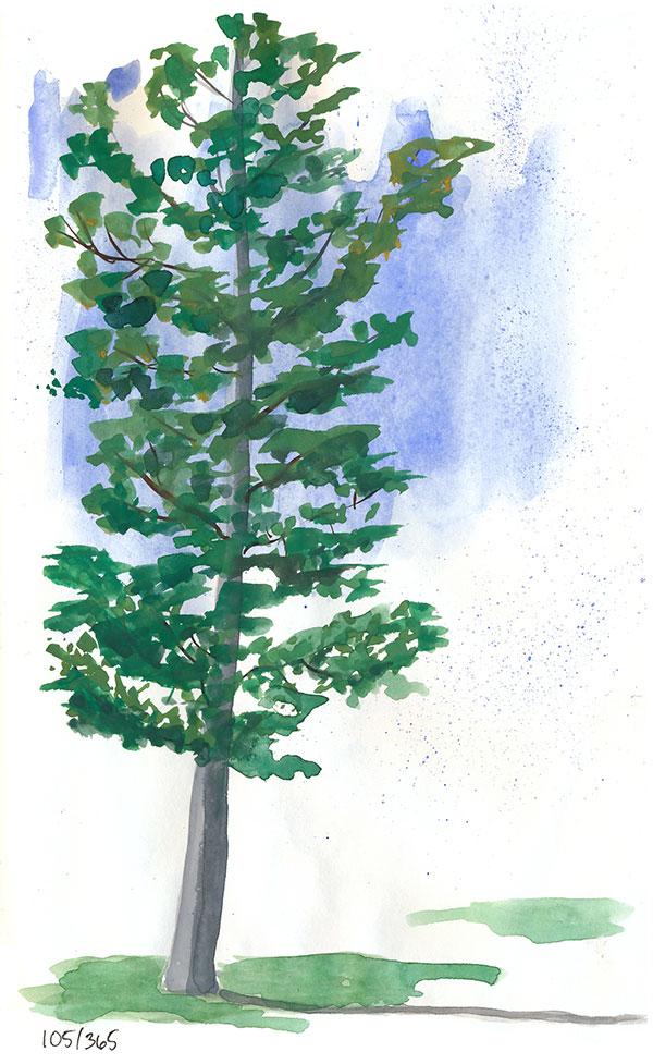 drawingsarah.com | 105/365