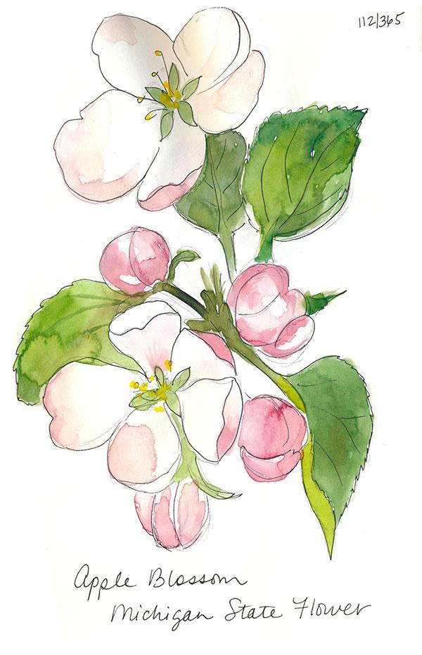drawingsarah.com | 112/365