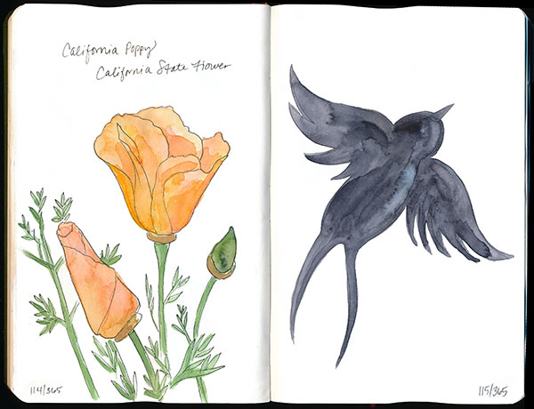 drawingsarah.com | 114/365 and 115/365