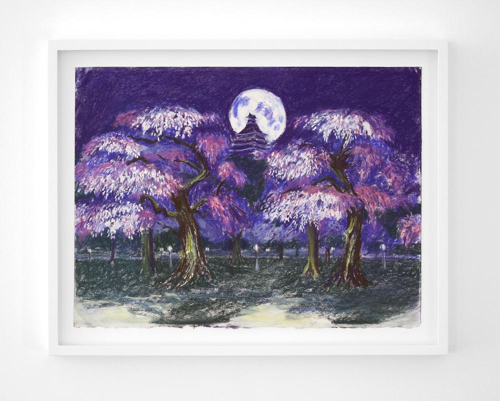 Night Blossom.jpg