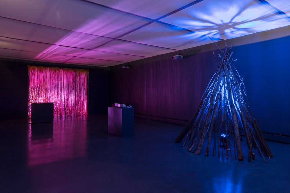 Installation view. Photo: Paul Allitt