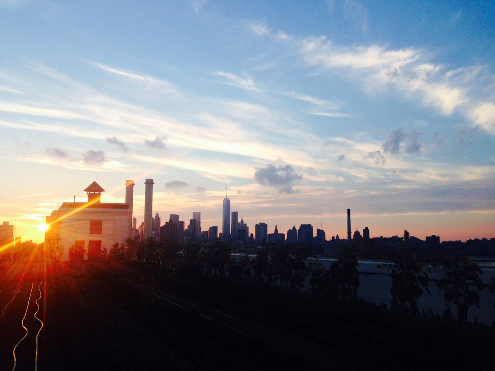 Brooklyn Grange and the Manhattan Skyline-  Brooklyn New York