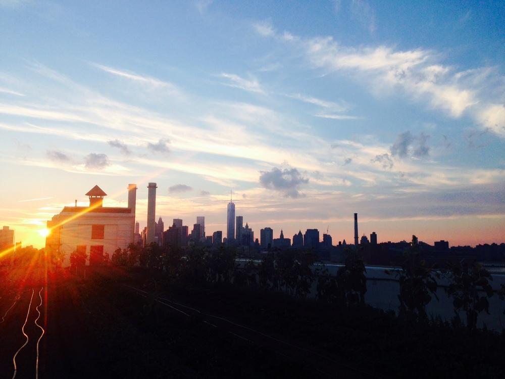 Brooklyn Grange and the Manhattan Skyline-Brooklyn New York