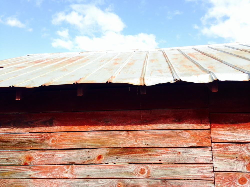 Barn Red, White Steel and Blue Sky-Leicester, North Carolina