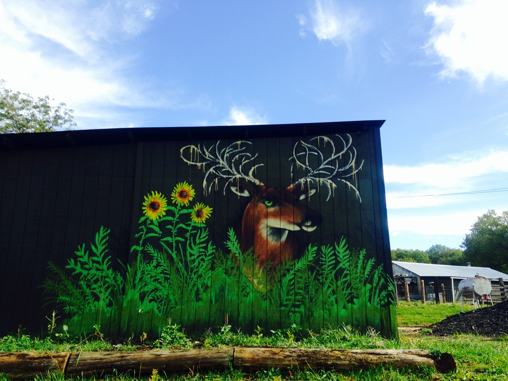 Amazing art at Such & Such Farm