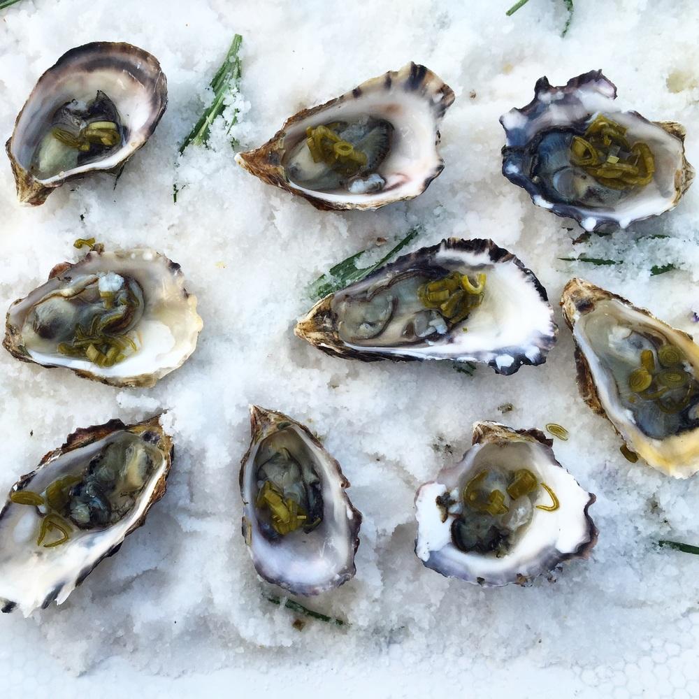 Miyagi Oysters+ Green Garlic Mignonette at Front Porch Farm
