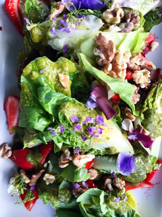 Spring Gem Lettuce+ Strawberries + Walnuts & Wildflowersby Chef Robin Songat Front Porch Farms in Healdsburg, California