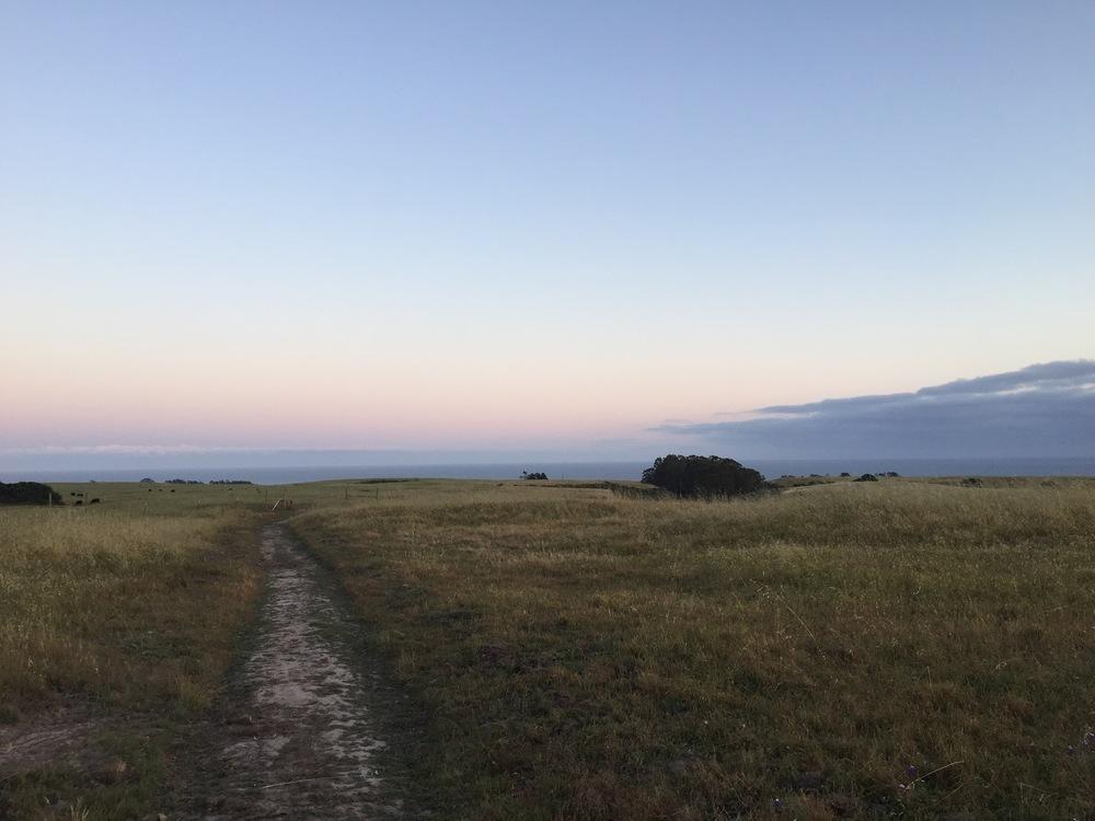 Path to Santa Cruz in TheMoore Creek Preserve at dusk