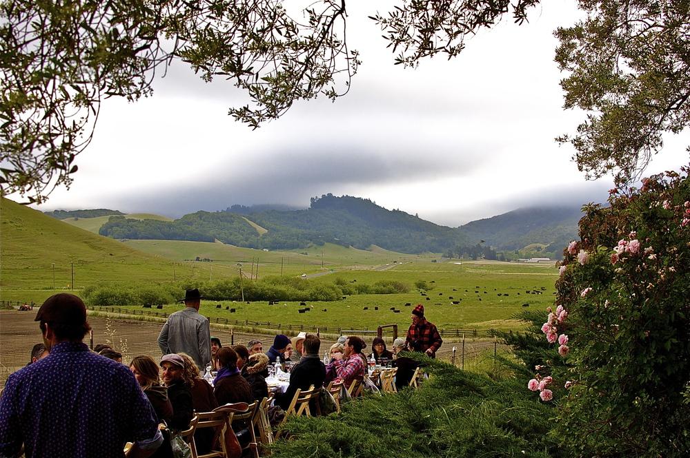 Dinner in Petaluma at Dolcini Ranch