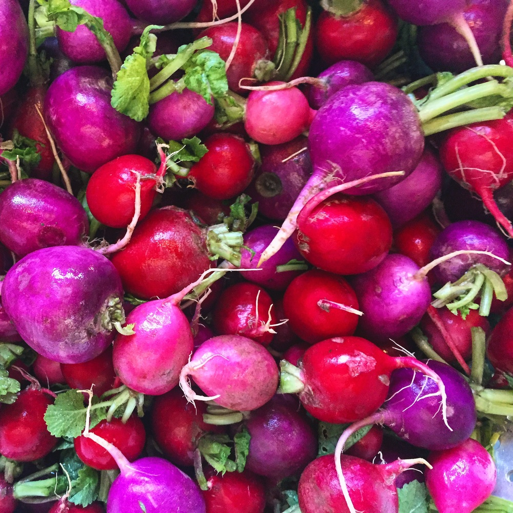 Radishes from Happy Boy Farms