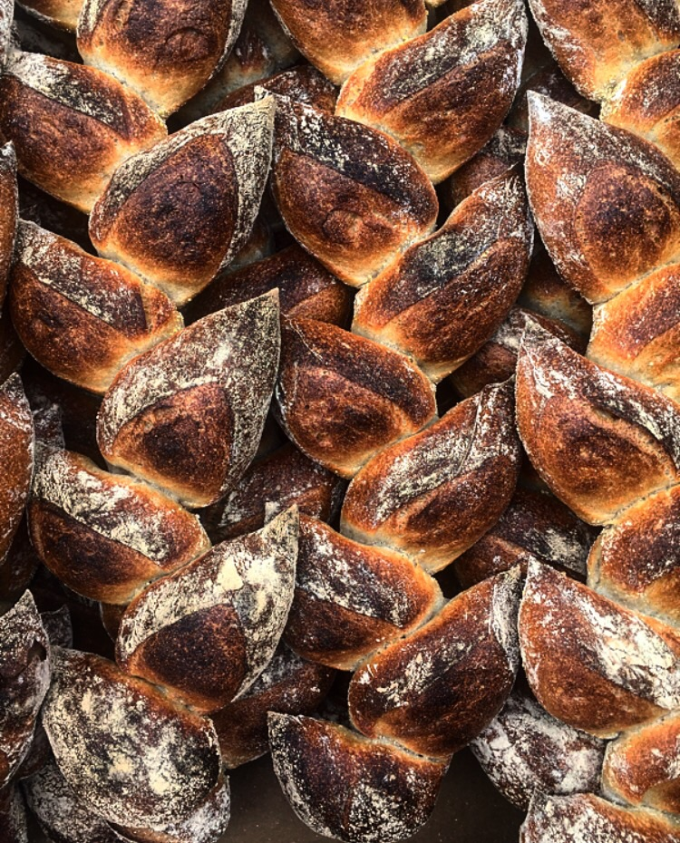 Pedja's absolutely perfect Bread // Boston, Massachusetts