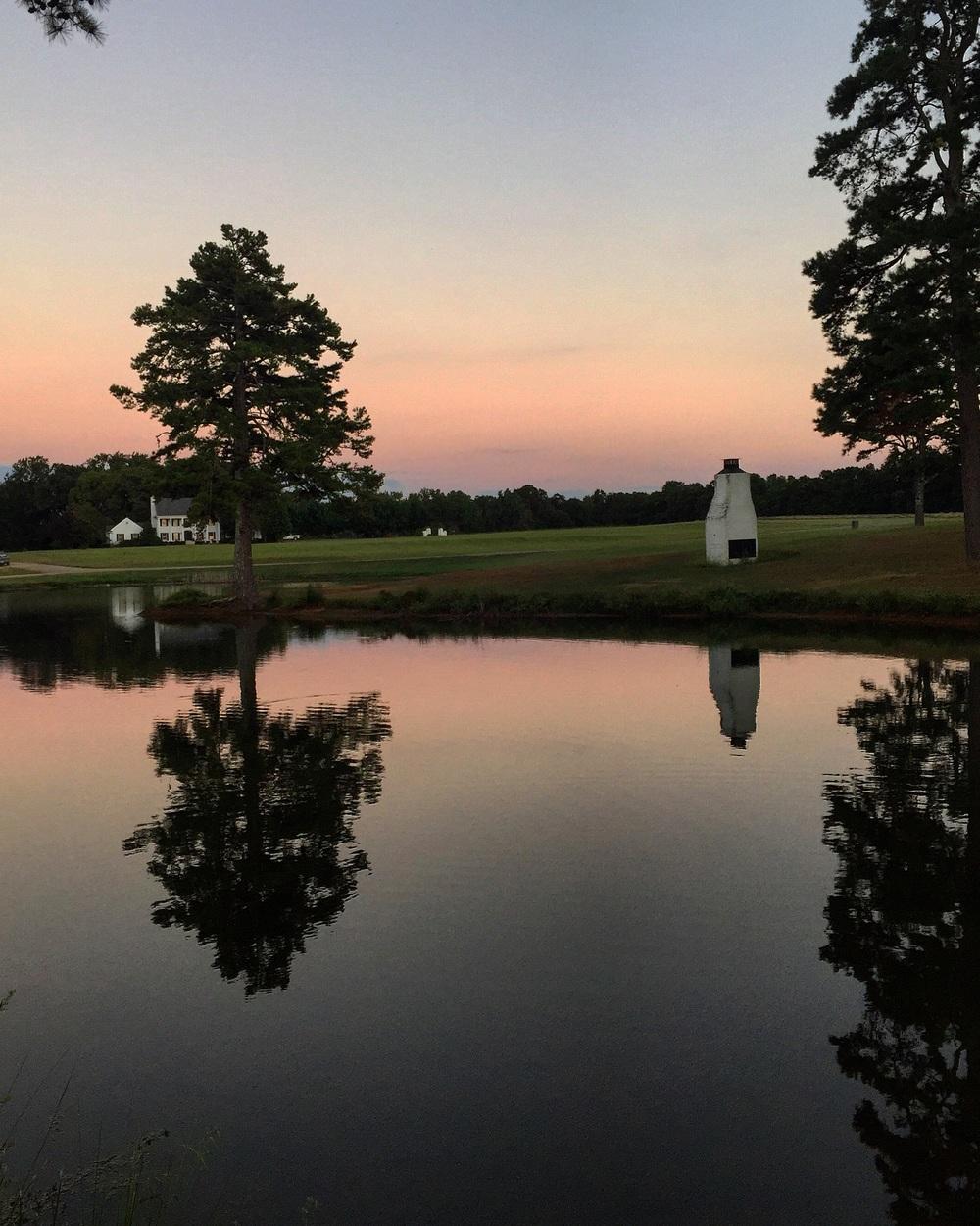 Evening Light// Oxford, Mississippi