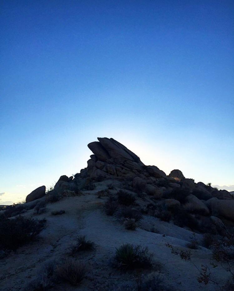 Last Light// Joshua Tree, California