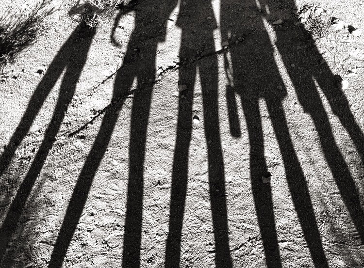 Shadow Friends// Joshua Tree, California