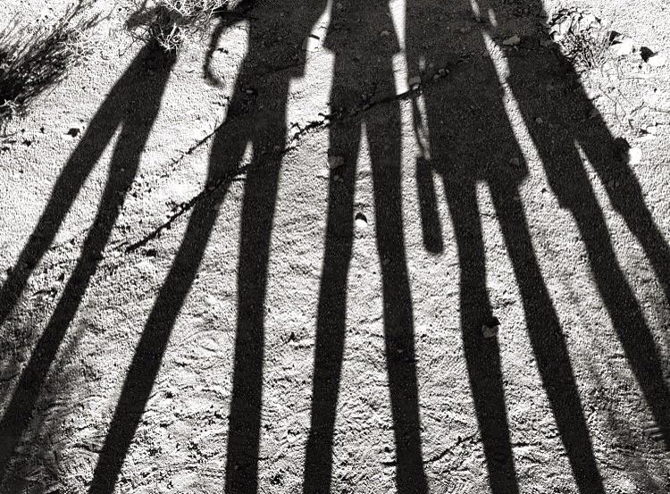 Shadow Friends// Joshua Tree, California