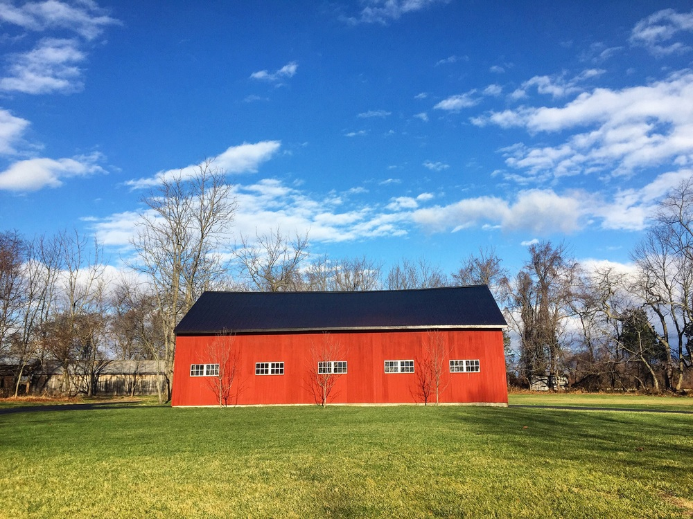 Back to Pennsylvania// Solebury, Pennsylvania