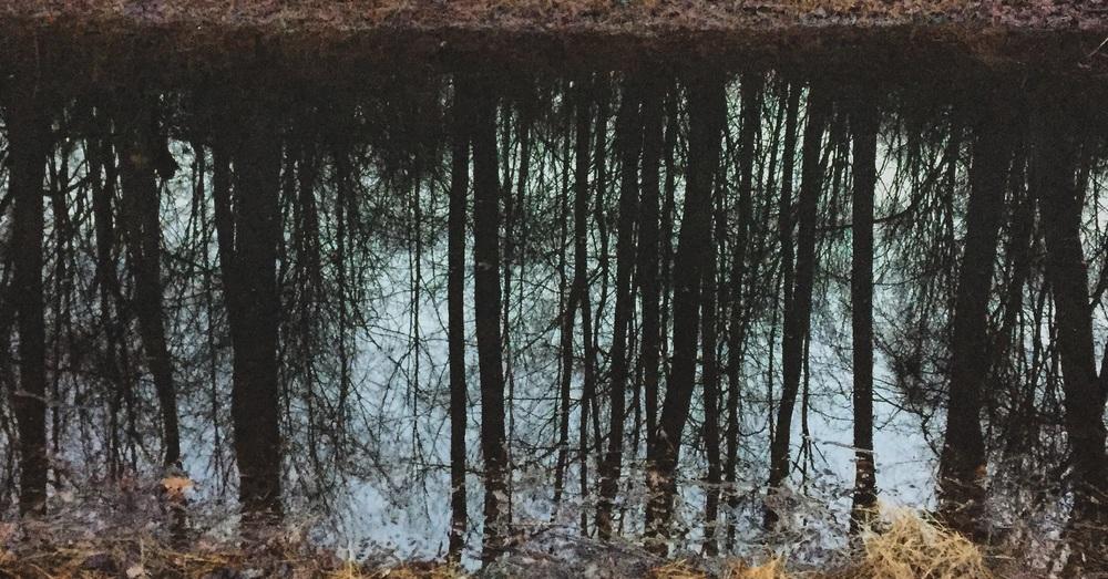 Canal Reflections// Upper Black Eddy, Pennsylvania