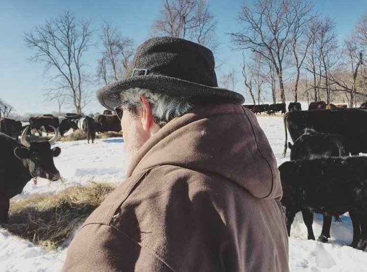 Jonathan White + his herd// Milford, New Jersey