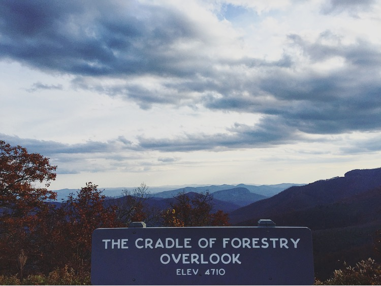Cradle// Blue Ridge Parkway, North Carolina