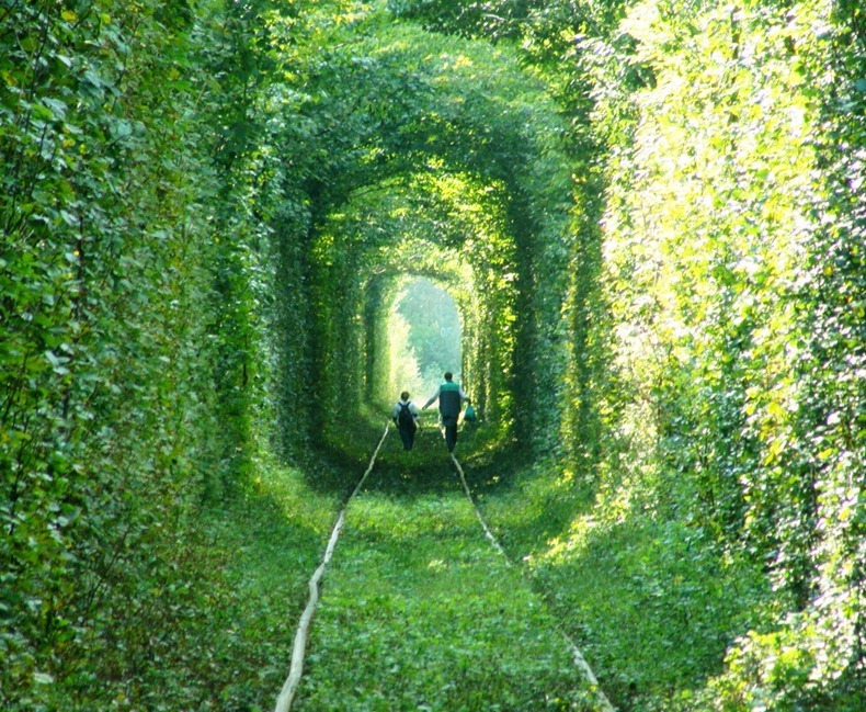 tunnel-of-love-4[3].jpg