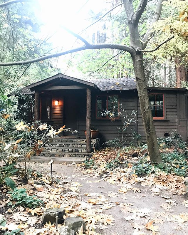 Good Morning from our little cabin in the woods!🌲 @glenoaksbigsur