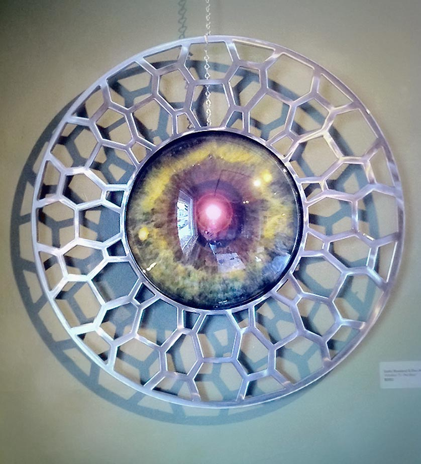 "Windows To The Soul 48"" x 10"" (depth of plexi bubble center) - Rowland Augur"