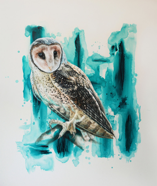 Masked Owl Splash