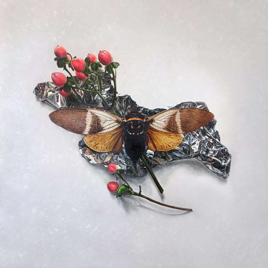 AlexLouisa-06-Hypericum-Cicada-120x120cm.jpg
