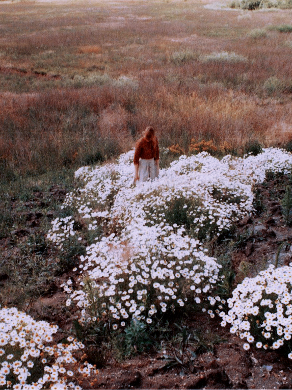 letthedreamunfold :     by Julia Aumann
