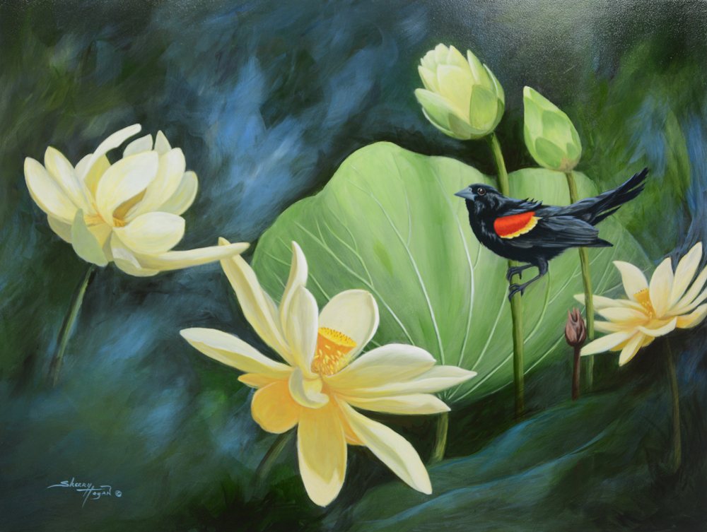 Sherry Hogan Title: Red-Wing in Lotus Size: 18 x 24 Price: $2500