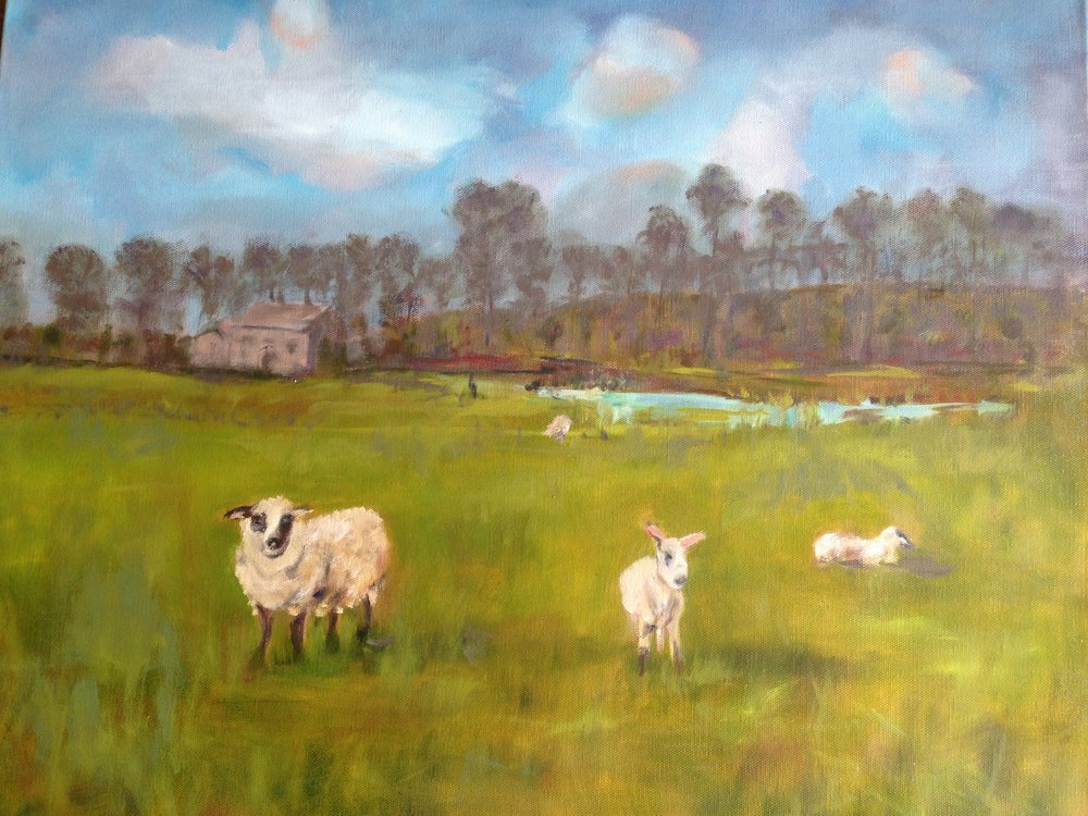 Frances McManus Title: Irish sheep Size: 15 x 20 x 2 Price: $