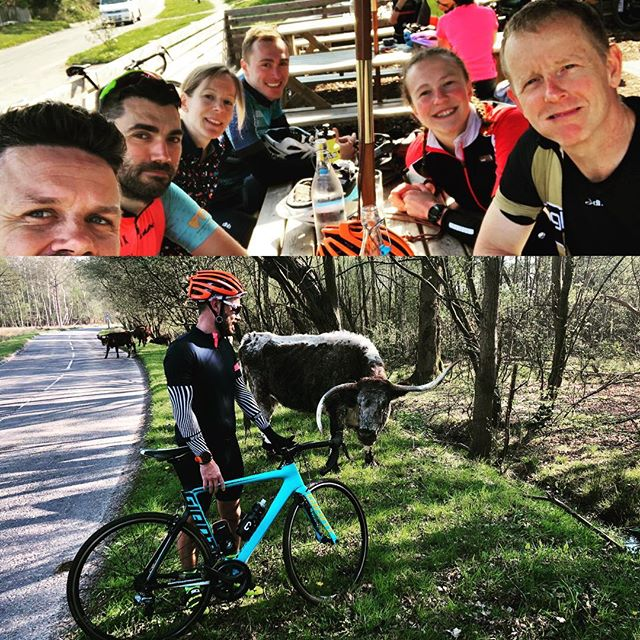 "Sunday Funday group ride! 70k #brightontriclub ""the one where everybody gets lost"" but no one did. Great coffees @velusso_cycling thanks @saraleatherland. Met an animal none of us could identify (and one of us is a vet @emma.dixon147 Also bumped into @ratperry and @phoebslebrecht as well, what a morning!"