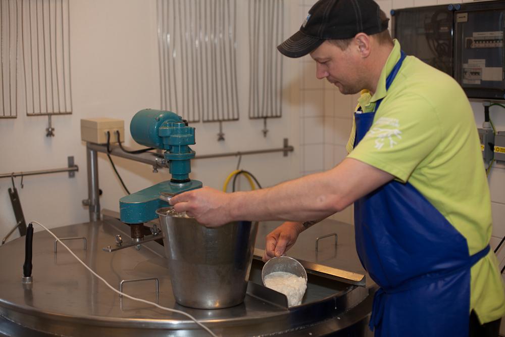 Eftersom vi pastöriserar all mjölk har vi tagit bort både onda och goda bakterier. Här tillsätts åter de goda mjölksyrabakterierna. De kommer att äta mjölksocker och omvandla det till mjölksyra. Det finns många typer av mjölksyrabakterier och vilken vi väljer beror på vilken ostsort vi ska göra. Forts >>