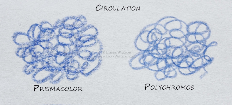 Demonstration Prismacolor and Polychromos with the circulation method of shading