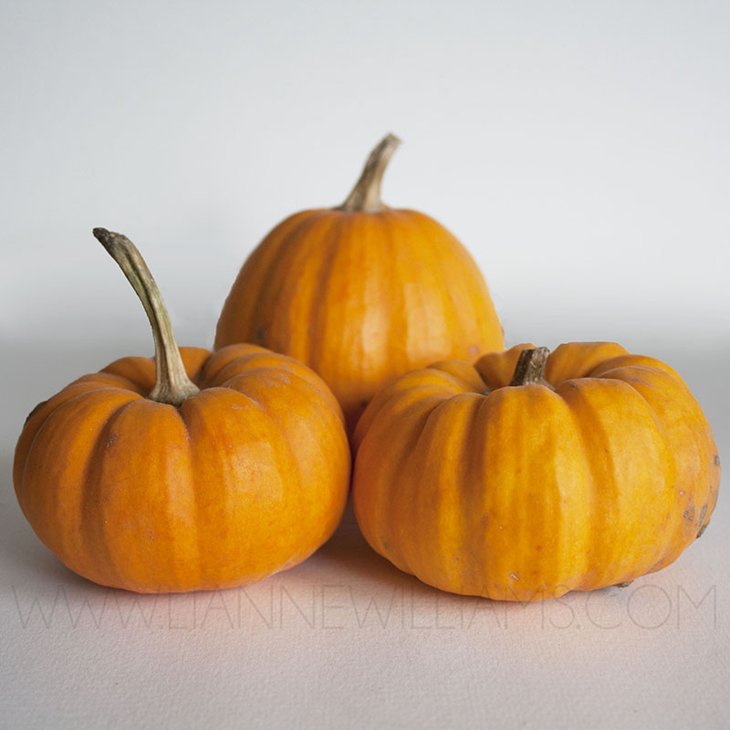 Anyone not celebrating halloween.jpg