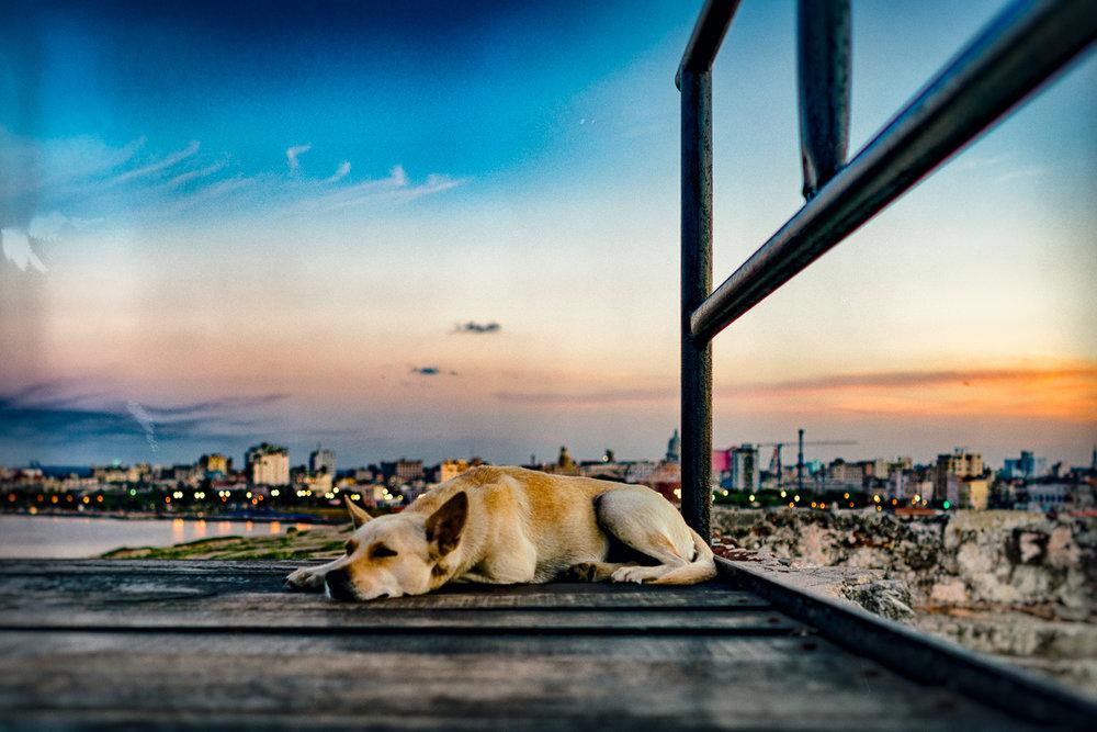 Cuba_Butler-15.jpg