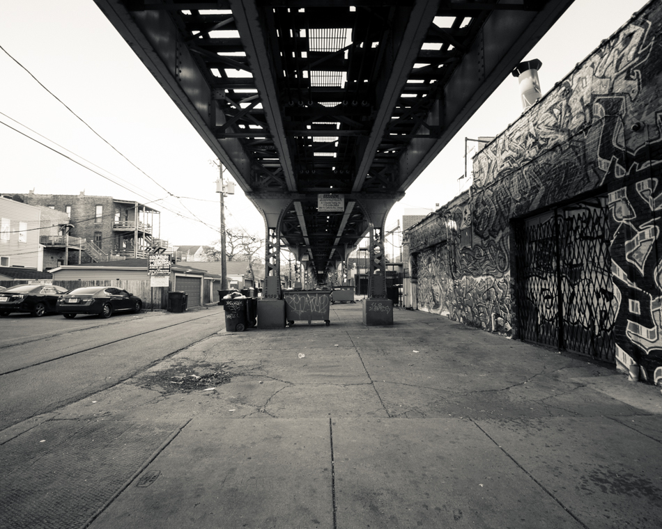 Wicker Park, beneath the Blue Line;  November 24, 2013