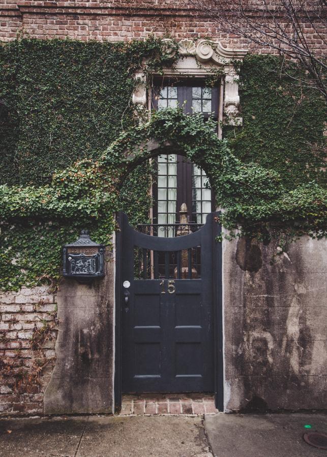 charleston-south-of-broad-ivy-gate.jpg