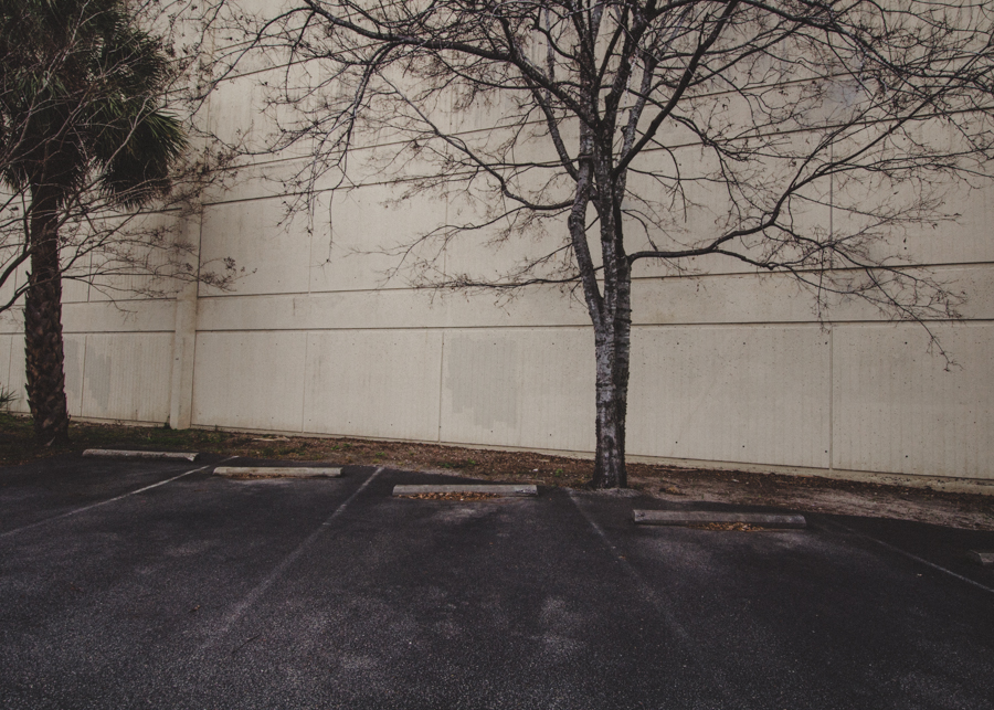 Empty Spaces, Charleston