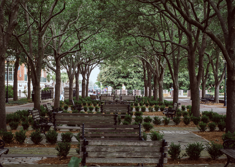 charleston-waterfront-park-benches.jpg