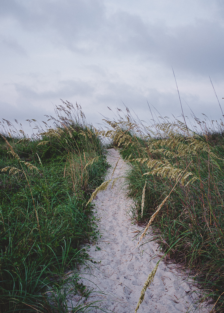 oak-island-pathway-thru-dunes.jpg