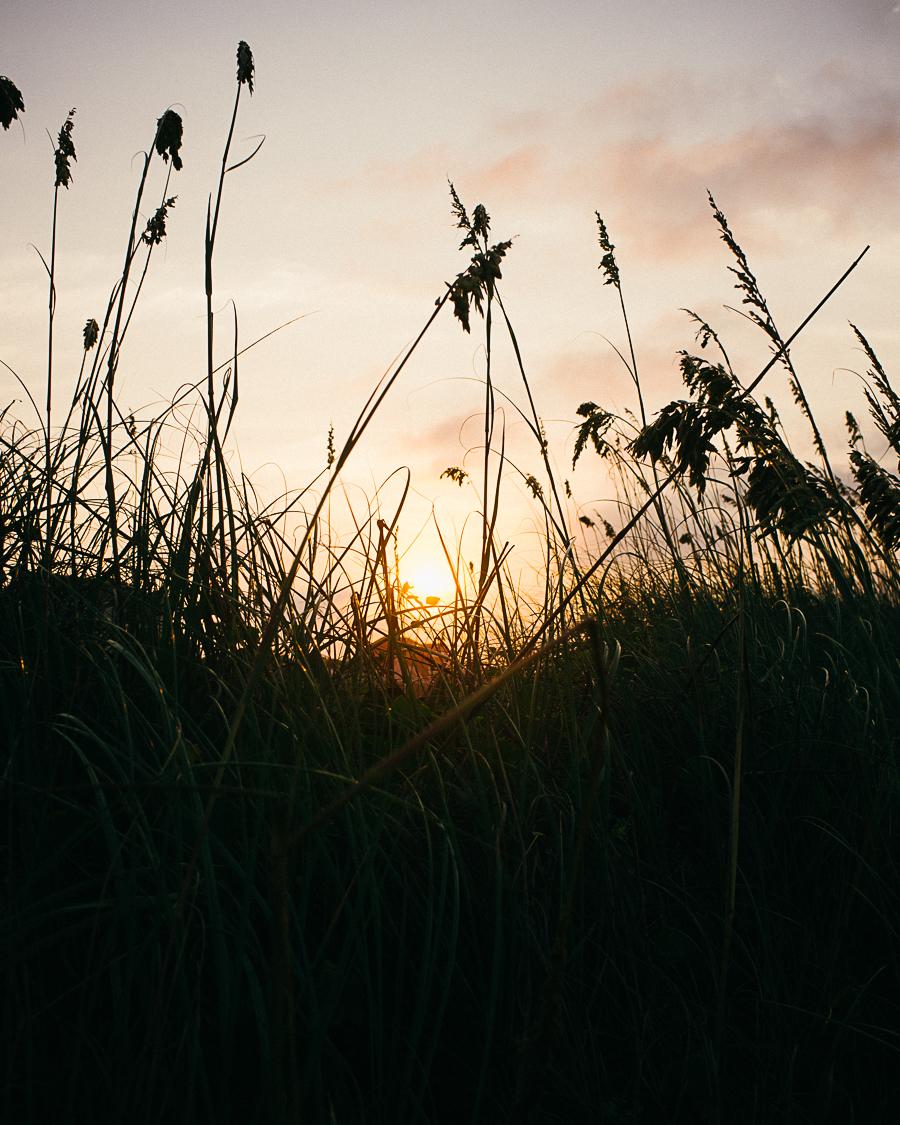 oak-island-sunrise-thru-dunes.jpg