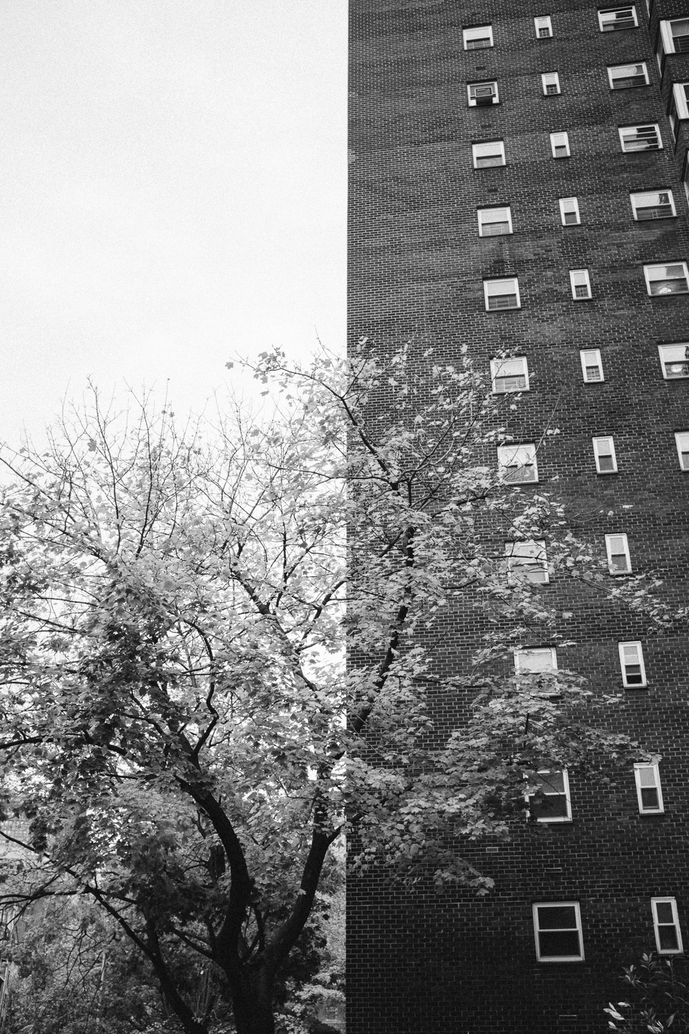 Chelsea Contrast, W. 25th Street, Manhattan