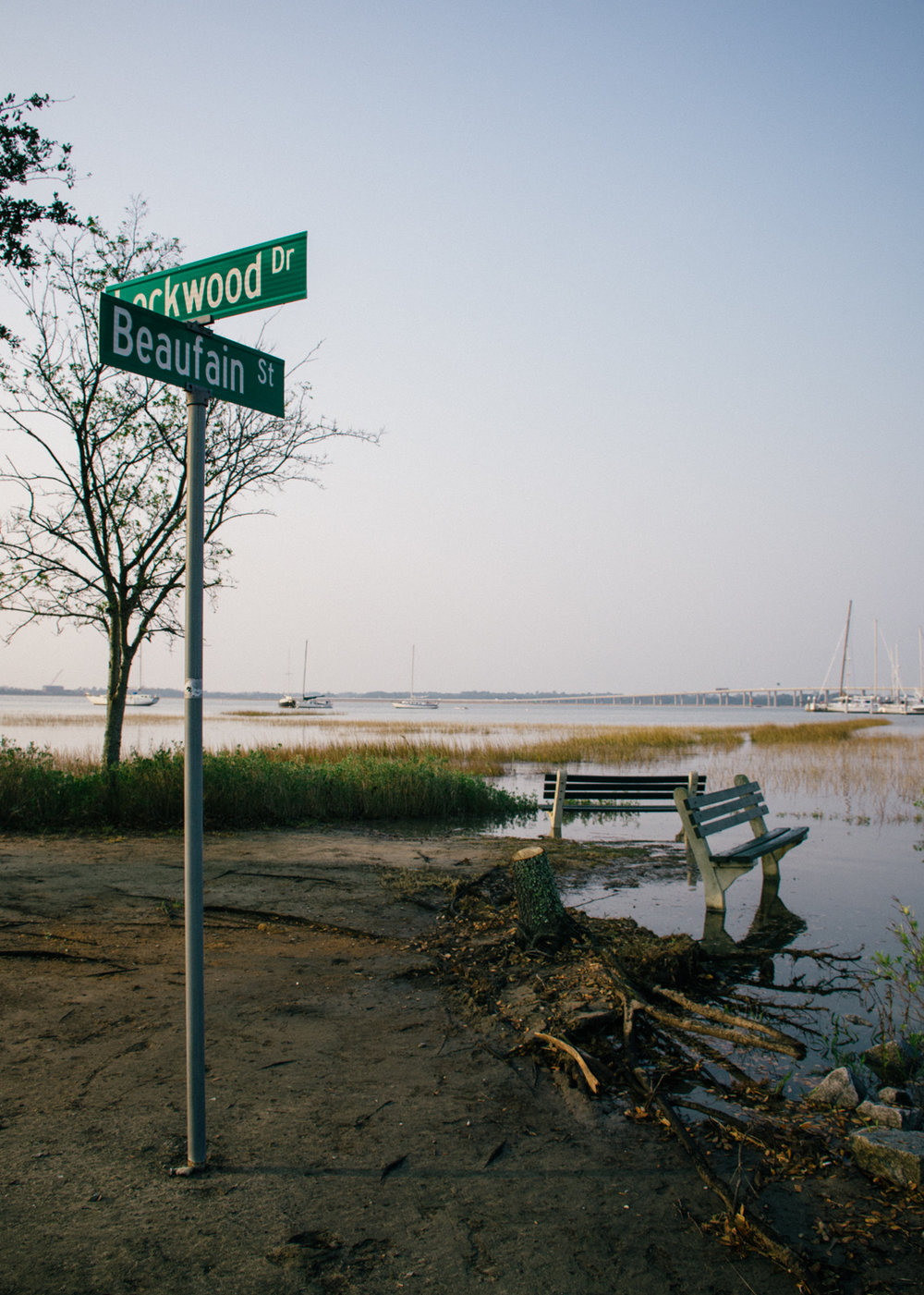 Rising King Tide, Ashley River, Charleston;  November 2016